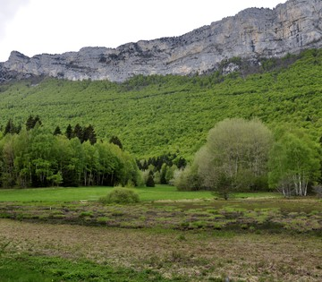Tourbière du Peuil © C Baudin OTGAM (7).JPG